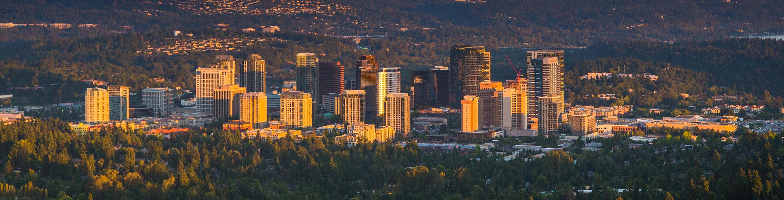 Bellevue, WA Header